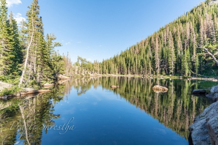 Dream Lake in Rocky Mountain National Park capturing the reflections of surround trees and deep blue clear sky