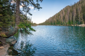 Serene view of Dream Lake with trees outlining the lake at Rocky Mountain National Park in Colorado