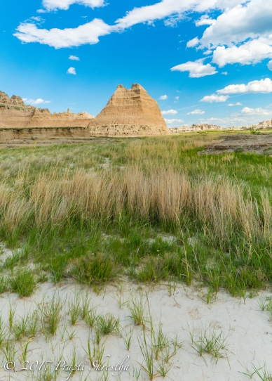 Badlands National Park 6