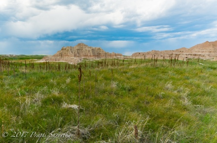 Badlands National Park 7
